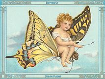 Butterfly Dream Flight