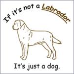 Dog Saying