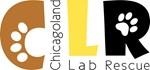 2013 CLR Logo