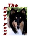 The Eddy Fund