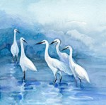 We 5 Egrets