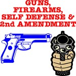 Guns 2nd Amendment