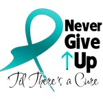 Never Give Up Ovarian Cancer