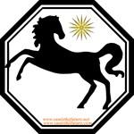 Horse Eye On Sun