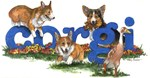 Corgi Name Games