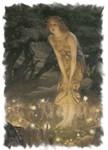 Fairies, Fairies & More Fairies