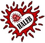 PLL Haleb