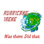 Hurricane Irene Was There Did That