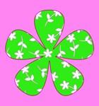 Flowers / Fleurs / Floral / Nature
