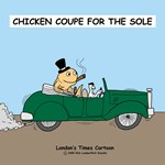 Chicken Coupe for the Sole