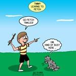 Fetch Timmy