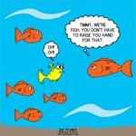 Fish Bathroom Protocol