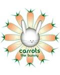 Carrots-Go-Round #1