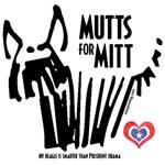 Beagle Mutts for Mitt