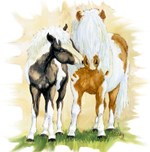Mini Mare and Foal, paints