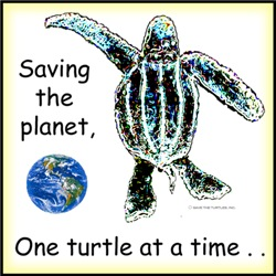 Sea Turtle T shirts