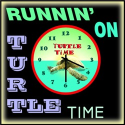 Funny Turtle T Shirts