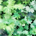 Leaves and Trees