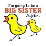 Chicks Big Secret Big Sister Again