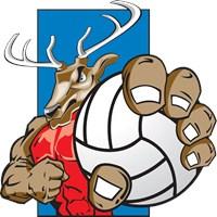 Bucks County Volleyball