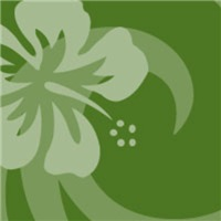 Dark Green Hibiscus