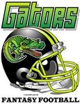 FFL Gators Helmet