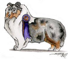 Sheltie Shetland Sheepdog Gifts