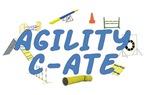 C-ATE Agility Title
