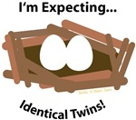 I'm Expecting Identical Twins!
