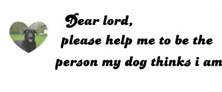 DEAR LORD WITH MIXED SHEPARD /LAB