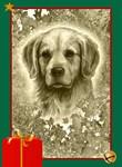 Golden Retriever Holiday by Marc Brinkerhoff
