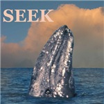 The new SEEK WHALES are here!