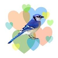 <b>BLUE JAY HEARTS</b>
