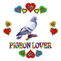 <b>PIGEON LOVER</b>