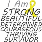 Sarcoma Cancer Strong Survivor Shirts