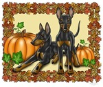 Autumn Toy Manchester Terriers
