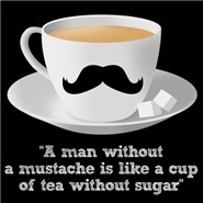 A man without a mustache is like a...