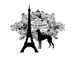 Eiffel Tower & Greyhound Dog