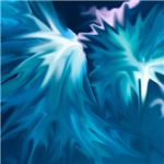abstract flowers-many colors