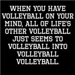 When You Have Volleyball On Your Mind