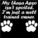 Well Trained Lhasa Apso Owner