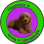 Happiness Is Loving A Labradoodle