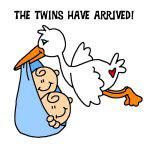 Stork Twins Have Arrived