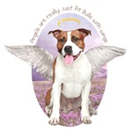 Angels are Pit Bulls with wings.