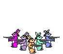Care Hare Commandos
