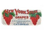 NYS Grapes