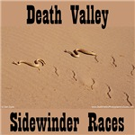 Death Valley Sidewinder Races