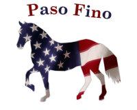 Paso Fino Flag