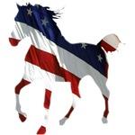 Mountain Horse Flag