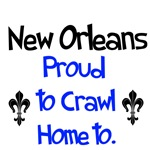 New Orleans and the South